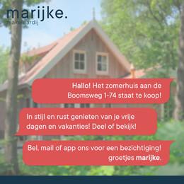 Social content - Marijke.
