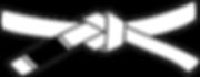 479px-BJJ_White_Belt.svg.png