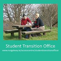 student transition picture poster.jpg