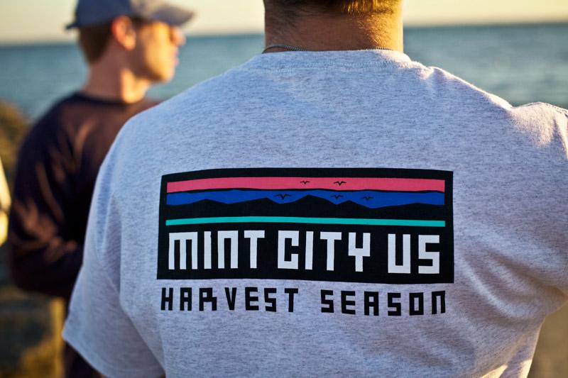 Harvest Season 3