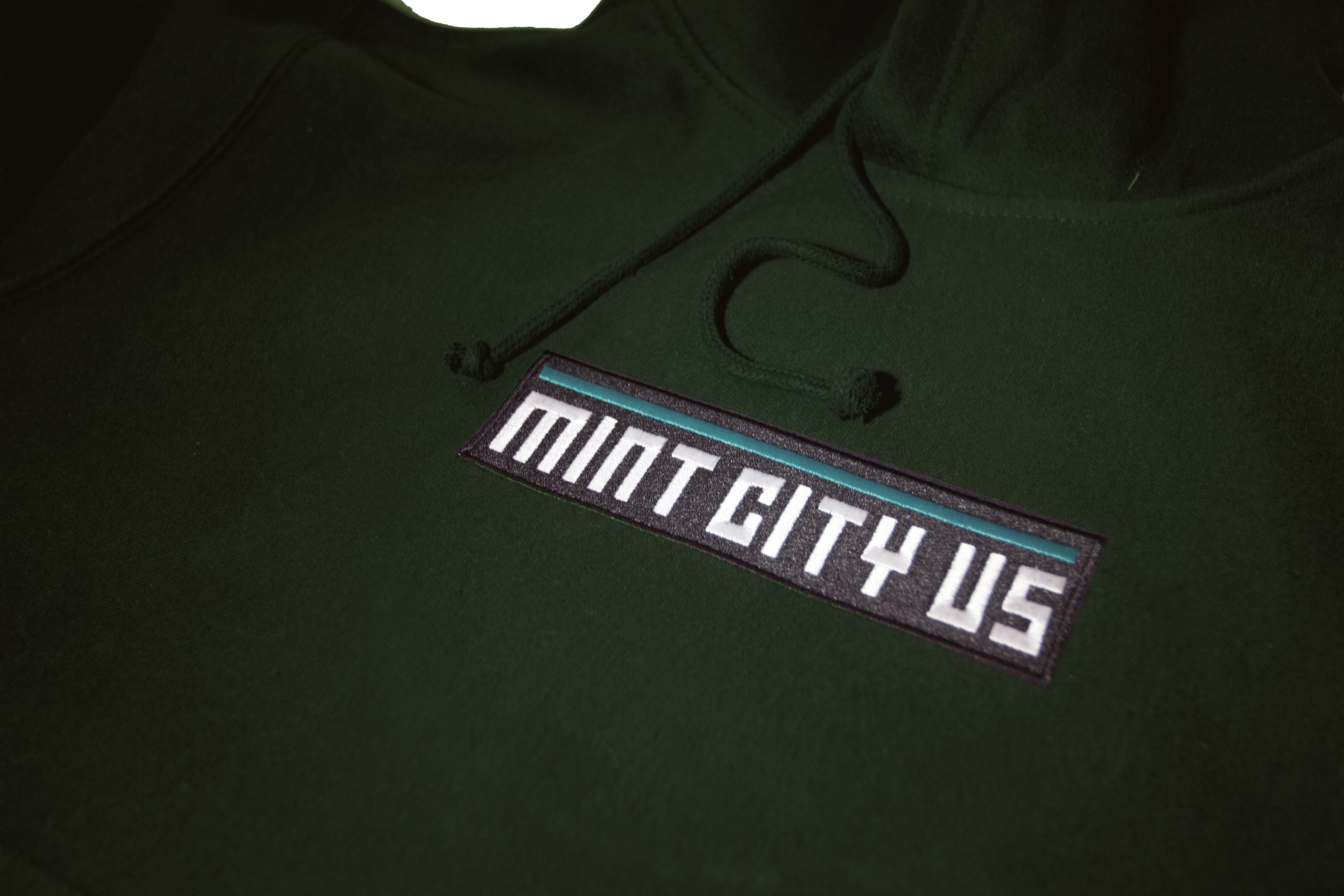 Mint City Box Logo Hoody In Sea Weed