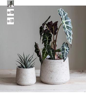 Set of 2 Cement Plant Pots