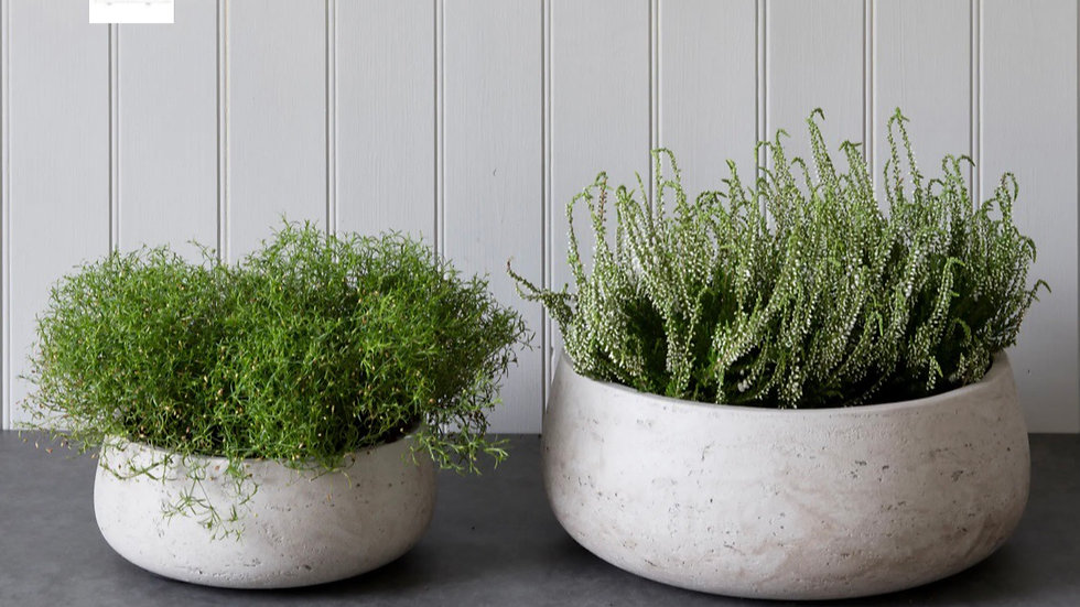 Set of 2 Cement bowls