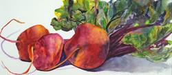 Cathy Hirsh - Beets - watercolor