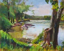 Jeanne Powell - Potomac Outlook - Oil