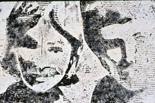 Copy of DSC_0025.jpg