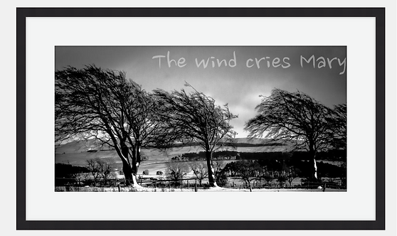"""""""The wind cries Mary"""""""