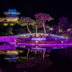 วัฒนธรรมกลางคืน ซูวอน