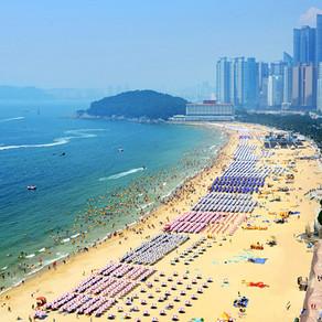 [Korea] ฤดูกาลว่ายน้ำบนชายหาดเริ่มขึ้นวันที่ 1 มิถุนายน