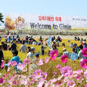 [Korea] Gimje Horizon Festival : เทศกาลฤดูใบไม้ล่วงที่ต้องไป!