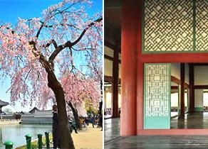 [Korea] เปิดบริการสุดพิเศษ ของศาลา Gyeonghoeru เริ่มตั้งแต่เดือนเมษายนนี้!