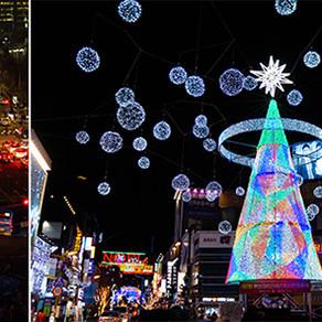 [Korea] ต้นคริสต์มาสในกรุงโซลและปูซาน! (Christmas Trees in Seoul & Busan!)