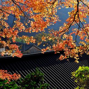 Dosoram Hermitage - Gochang (도솔암(고창))