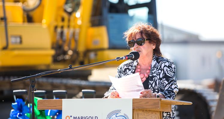 Marigold Board Chair Lynda Lyster