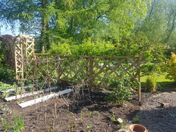 Rose arch and trellis installed.jpg