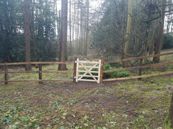 70m post and 3rail _ Hassop with Forrest