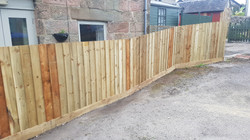 4ft featheredge boundary fence.jpg