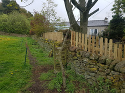 3ft picket above a stone wall, Tansley.j