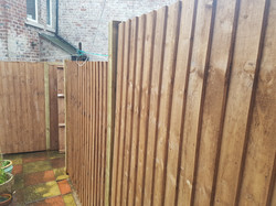 3.5ft with 1.5ft trellis vertilap fence