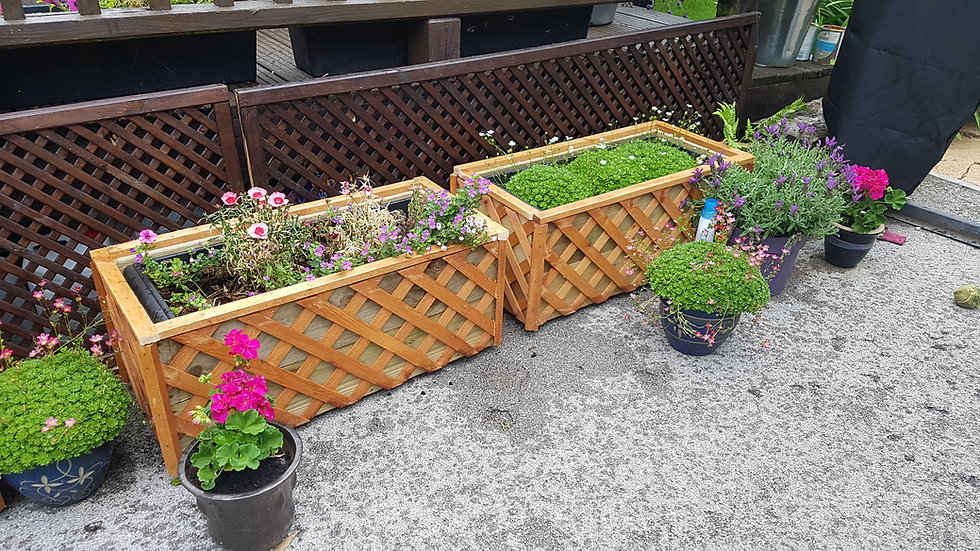 Medium bespoke trellis planters 30Wx12Hx10D