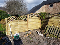 6ft_5ft_4ft and 3ft gate with trellis _