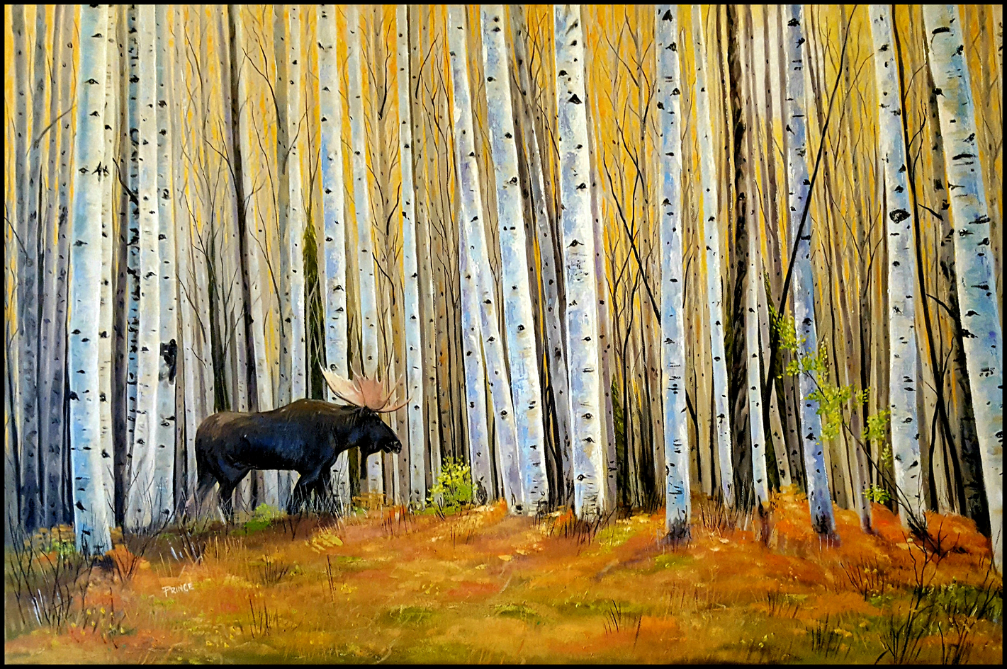 In the Company of Aspens