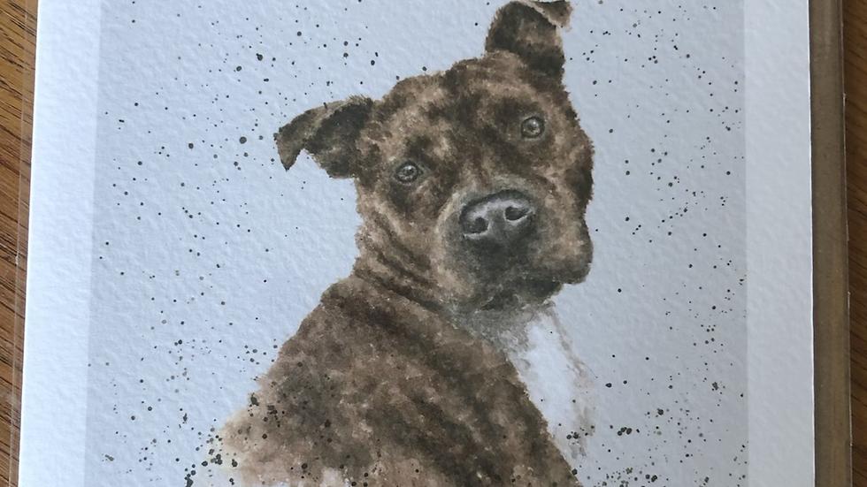 Staffordshire Bull Terrier Dog Card