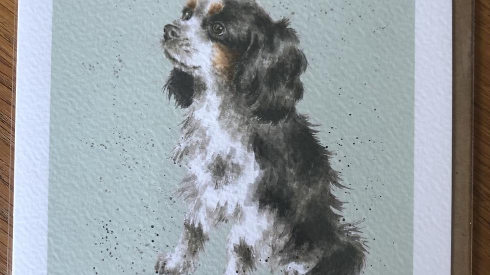 King Charles Cavalier Dog Card