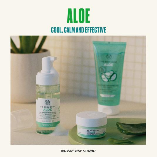 Aloe Range