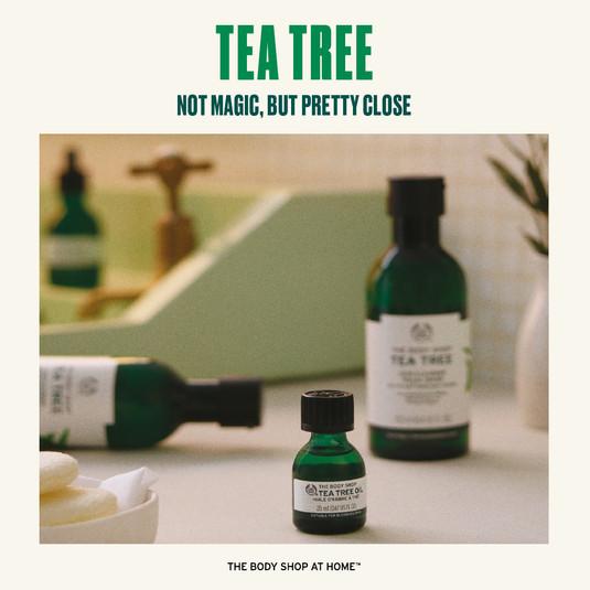 Tea Tree Range