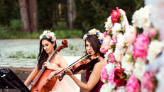 Свадбеные музыканты Violin Group DOLLS