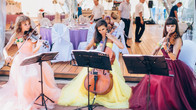 Струнное трио Violin Group DOLLS на свадьбе