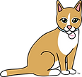 Ava_Cat.png