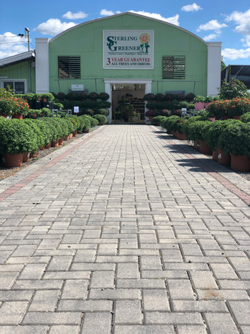 Garden Center Gallery 1