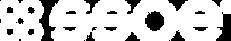 SSOE Logo.png