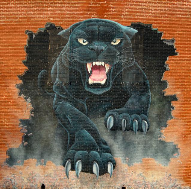 McComb Panthers Art