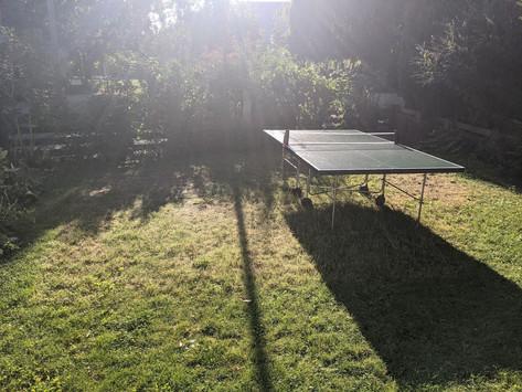 J'ai préféré jouer au ping pong