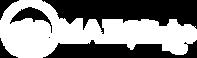 Logo_MailThinker_EMday21.png