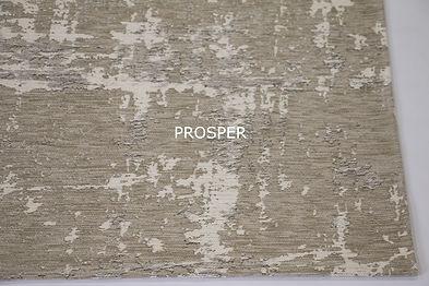 Prosper_21_02.jpg