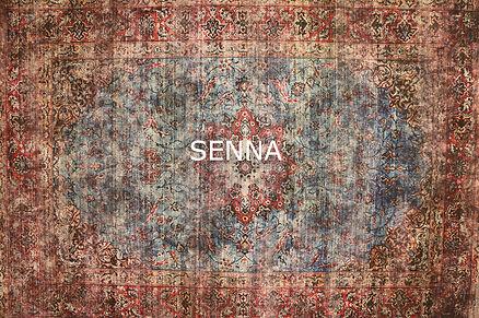 Senna99-01.jpg