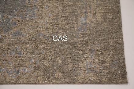 Cas_31_02.jpg