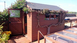 The Cavy Cabin in Summer