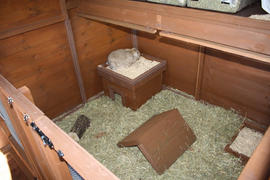 Another of our indoor pens