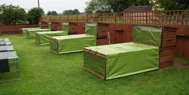 Our hutch & run units during adverse weather
