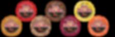 HotScream Ice Cream 7 flavors