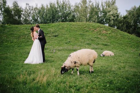 Wedding_web-289.jpg