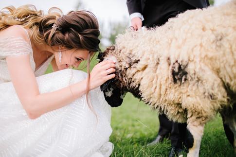Wedding_web-291.jpg