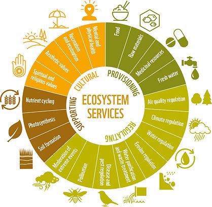 figure_25_ecosystem_services.jpg