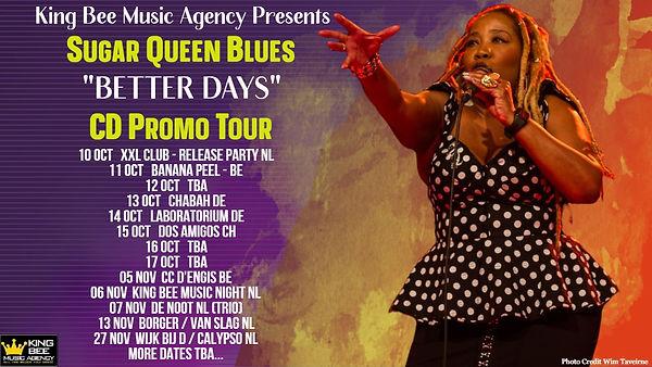 website promo tour yellow.jpg
