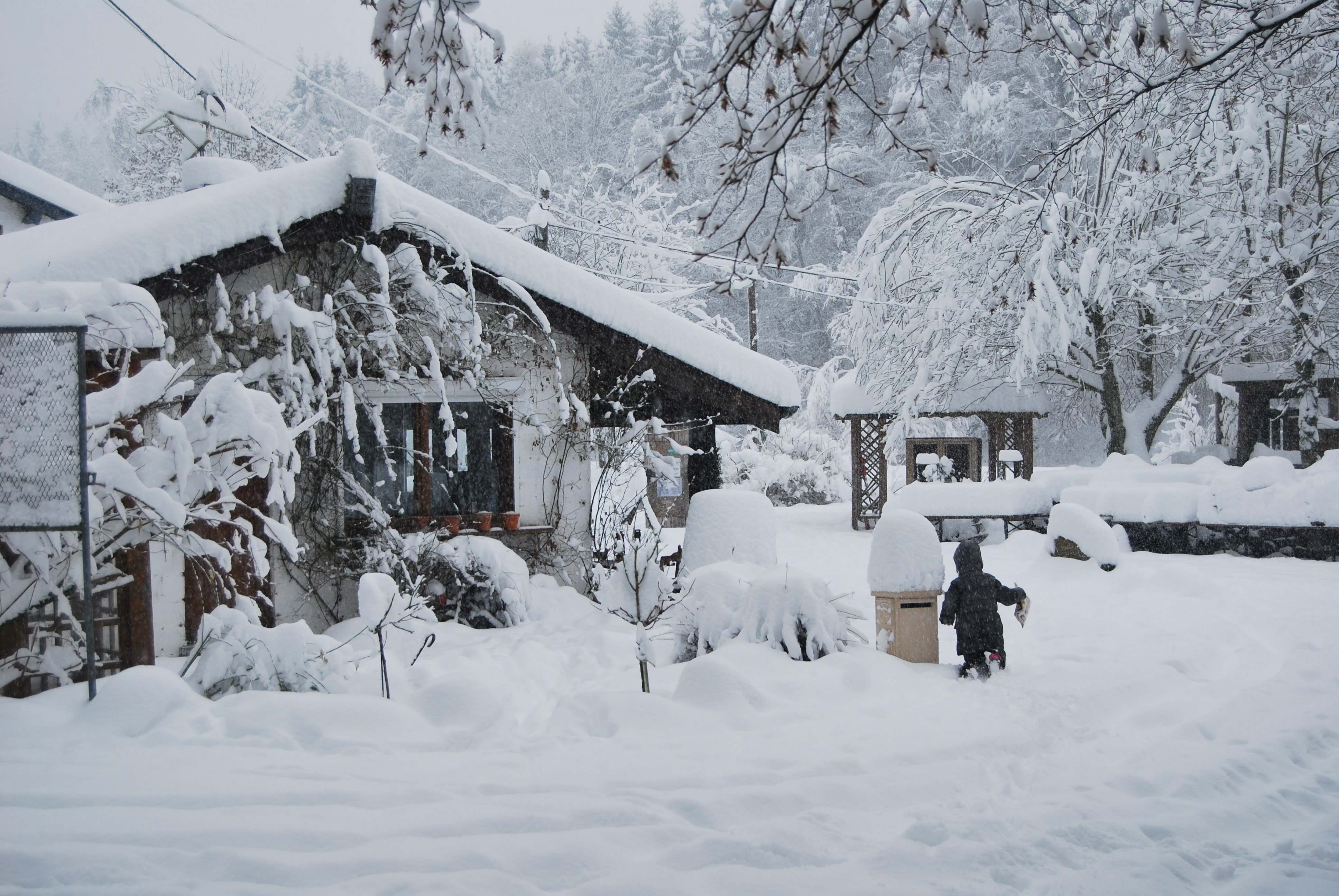 Par un jour d' hiver